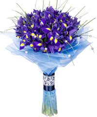 "Bouquet from цветов ""Blues Rhapsody"" with delivery in Novosibirsk 35 - 40 см."