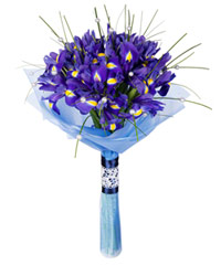 "Bouquet from цветов ""Blues Rhapsody"" with delivery in Novosibirsk 25 - 40 см."