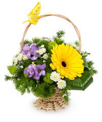 "Bouquet from цветов ""Good Morning! "" with delivery in Novosibirsk 15 - 20 см."