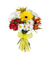 "Bouquet from цветов ""Fountain of Colour"" with delivery in Rostov-on-Don 20 - 30 см."